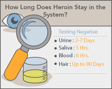 How Long Do Opiates Stay in Your System: Oxycodone & Hydrocodone